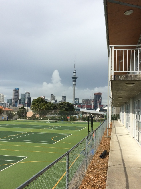 The view from some fields at Gracie's school. The Sky Tower is the centerpiece of the Auckland skyline, so that's why it's in all the pictures!