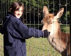 G petting a deer
