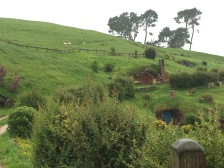 A couple Hobbit holes built into the hillside with some sheep in the background.