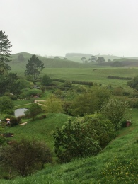 A view of part of The Shire.