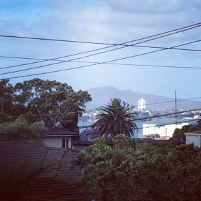 View of my beloved Rangitoto during my last afternoon's wine